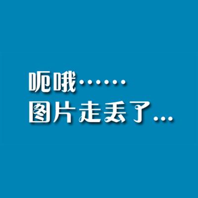 郑爽qq手绘图片动画